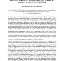 Sainz_Borgo Mudarev1.pdf